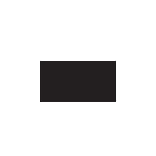 logo stozzi cuisines
